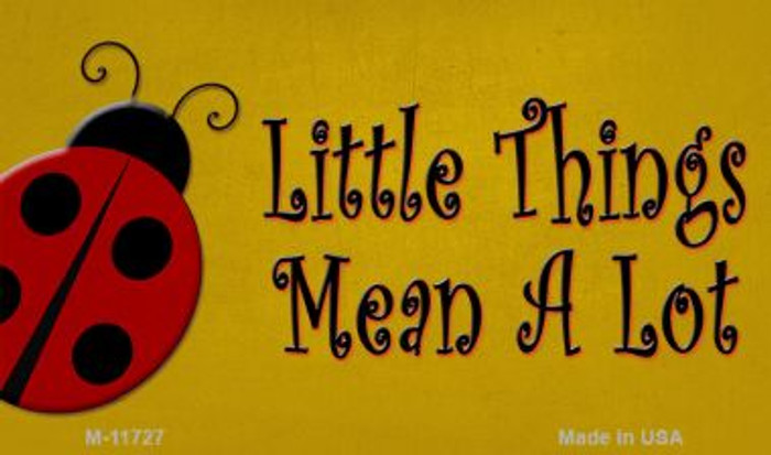 Little Things Mean A Lot Wholesale Novelty Magnet M-11727
