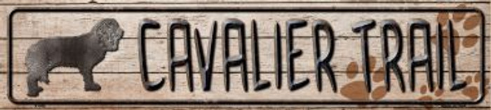 Cavalier Trail Wholesale Novelty Metal Small Street Signs