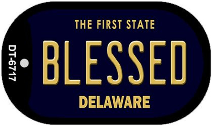 Blessed Delaware Wholesale Novelty Metal Dog Tag Necklace DT-6717