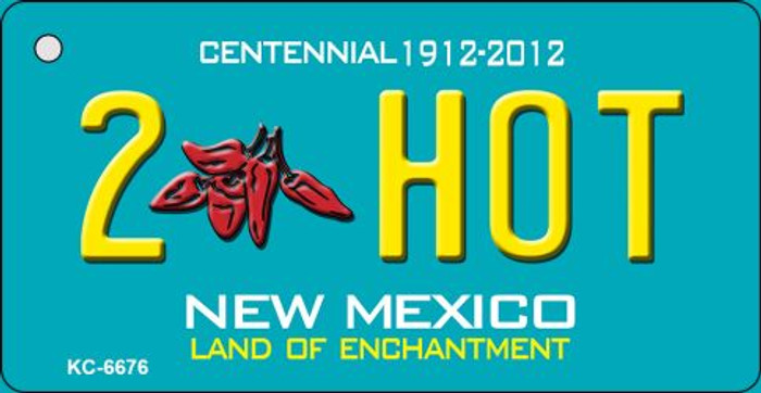 2 Hot Teal New Mexico Wholesale Novelty Metal Key Chain KC-6676