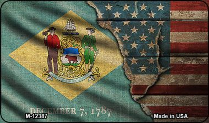 Delaware/American Flag Wholesale Novelty Metal Magnet M-12387
