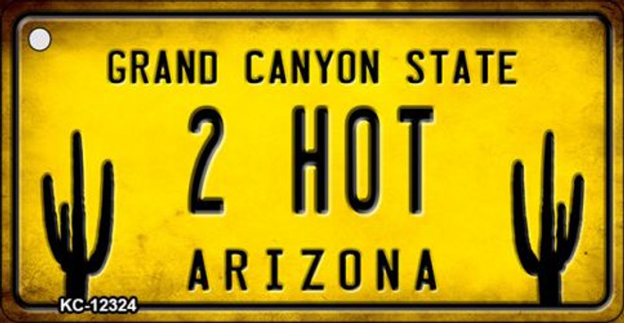 Arizona 2 Hot Wholesale Novelty Metal Key Chain KC-12324