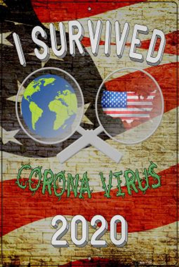 I Survived 2020 Wholesale Novelty Metal Large Parking Sign LGP-2877