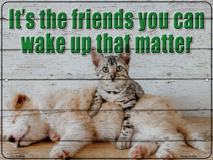 Its The Friends You Can Wake Up Wholesale Novelty Metal Parking Sign P-3049