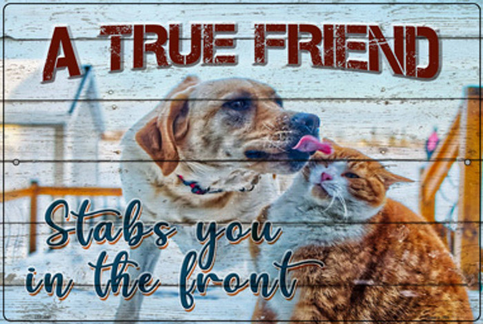 A True Friend Wholesale Novelty Large Metal Parking Sign LGP-3047