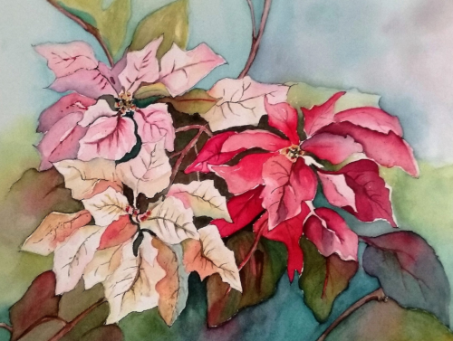 N-935 Poinsettia Trio