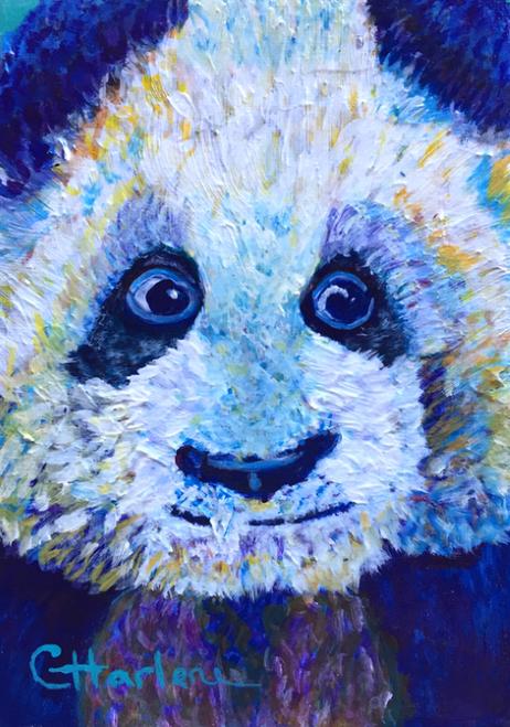 AC-997 Panda by Charlene Beil