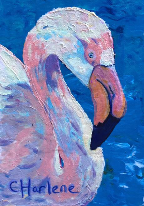 AC-999 Flamingo by Charlene Beil