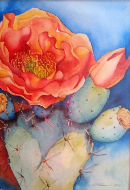 Blooming Prickly Pear