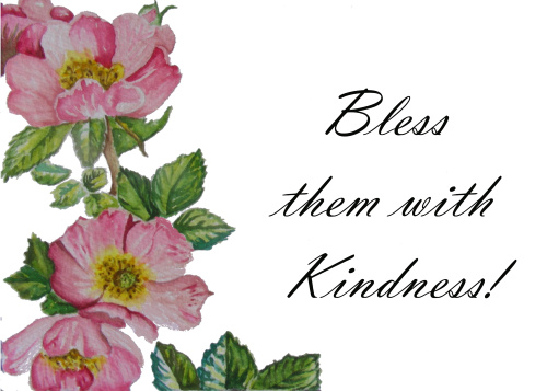 SAC-N-941 Bless Them With Kindess