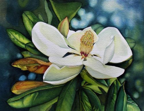 SAC-N-949 Magnolia 1