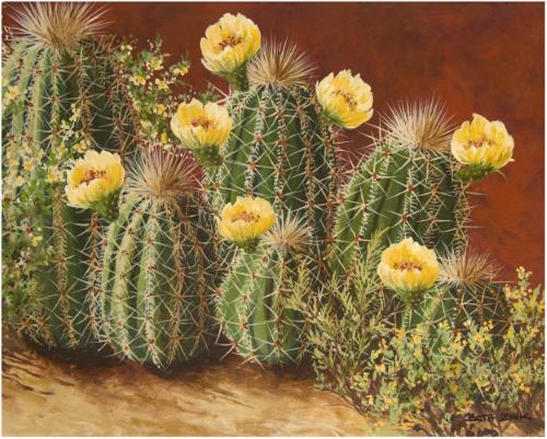 BZN-16 Yellow Flowering Hedgehogs by Beth Zink