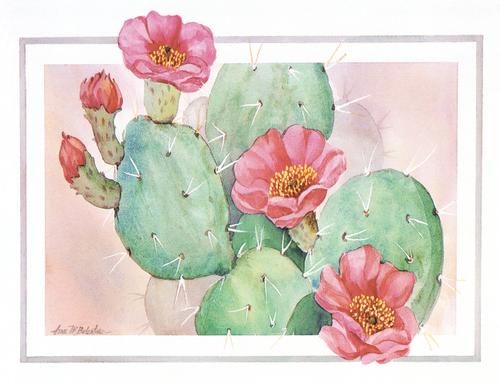 N-396 Desert Pink by Anna Balentine