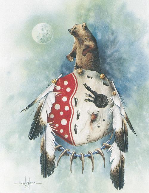 N-485 Bear Medicine Shield by Art Menchego
