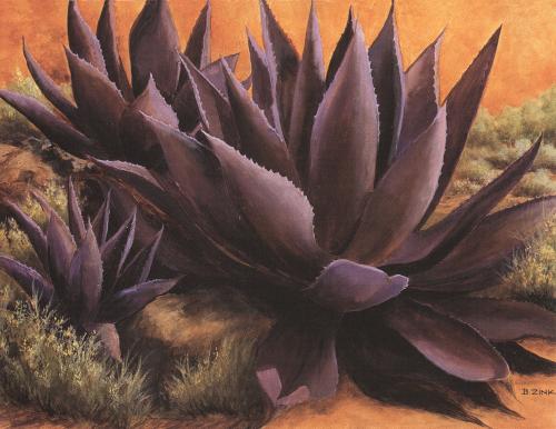 N-519 Purple Agaves On The Rocks by Beth Zink