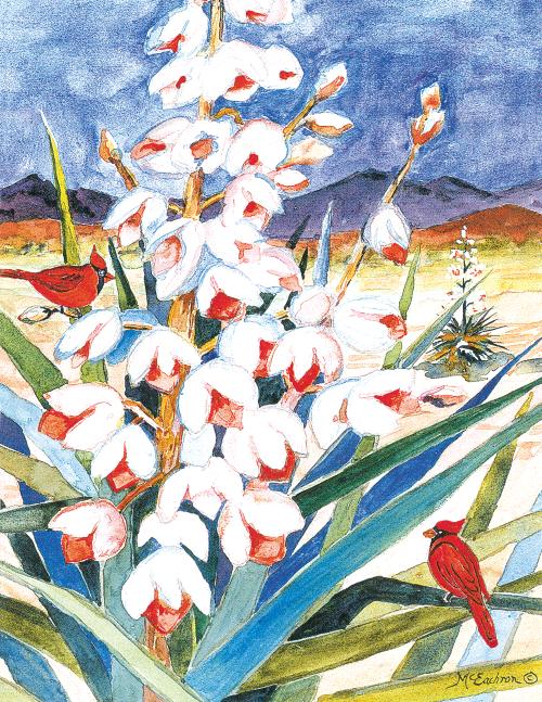 N-527 Yucca Bloom by Ann McEachron