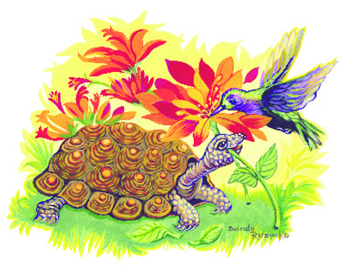 N-577 Tortise & The Hummer by Sandy Rusinko