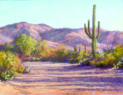N-626 Saguaro, Early Evening Shadows by Lee McVey