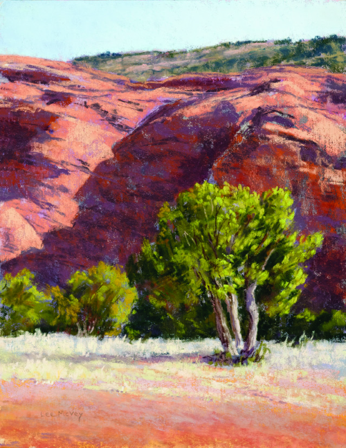 N-631 RedRock Shadows and Trees by Lee McVey