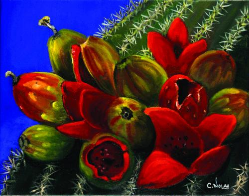 CHR-472 Saguaro Cactus Seed Pods by Cheryl Nolan