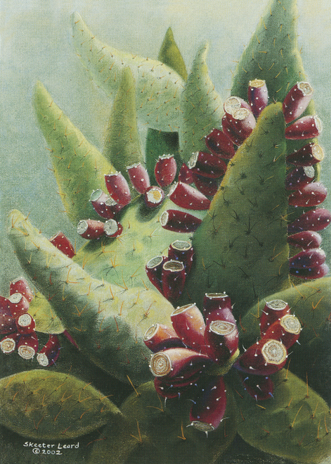 CHR-955 When Cactus Celebrate by Skeeter Leard