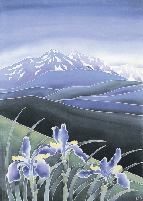 AC-640 Wild Mountain Iris by Harriet Peck-Taylor