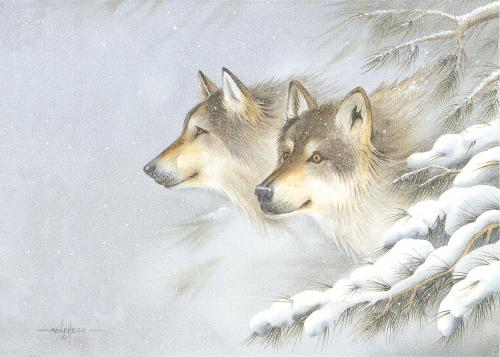 AC-812 Wilderness Spirit by Art Menchego