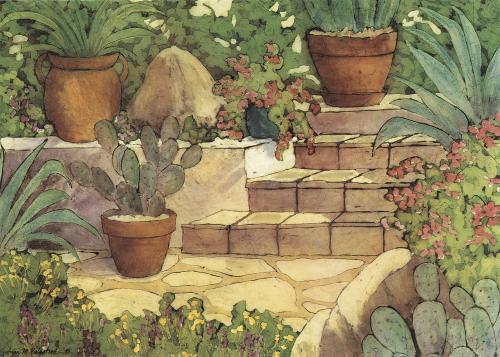 AC-817 Sonoran Garden by Anna Balentine