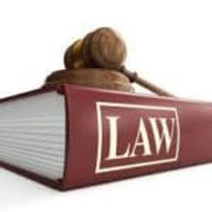 Dyslexia Laws