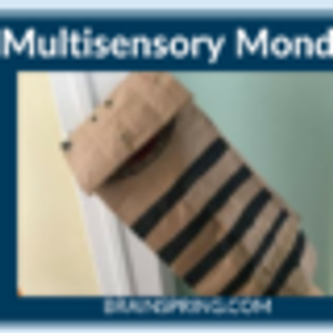 Multisensory Monday: Sammy the Zebra Teaches SLFZ Spelling Rule