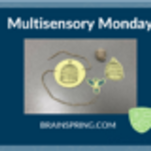Multisensory Monday: Optical Illusions with Bossy R