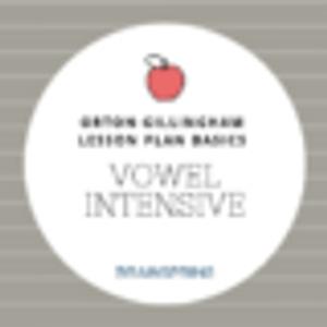Orton-Gillingham Lesson Basics: The Vowel Intensive