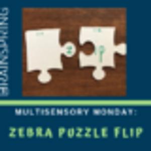 Multisensory Monday: Zebra Puzzle Flip