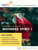 Wounded Spirit I Cover