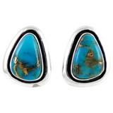 Sterling Silver Earrings Matrix Turquoise E1213-C84