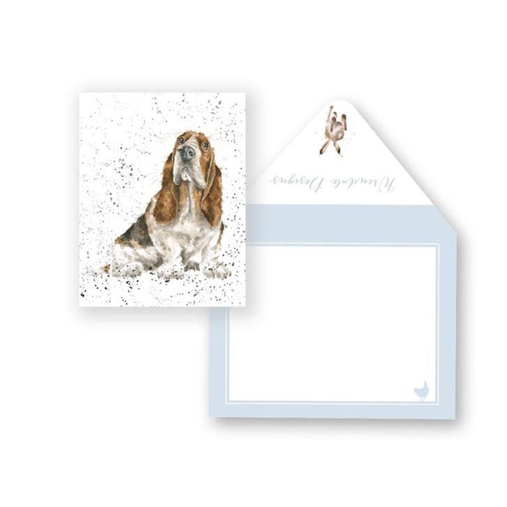basset hound gift enclosure