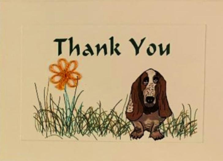 Basset Hound Thank you card