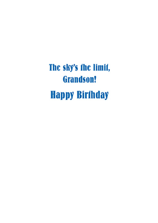 Basset grandson birthday card