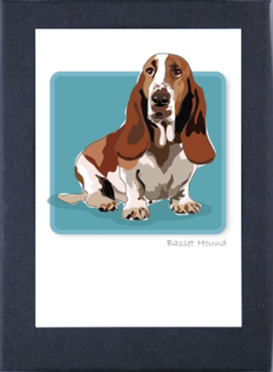 Boxed blank basset hound cards