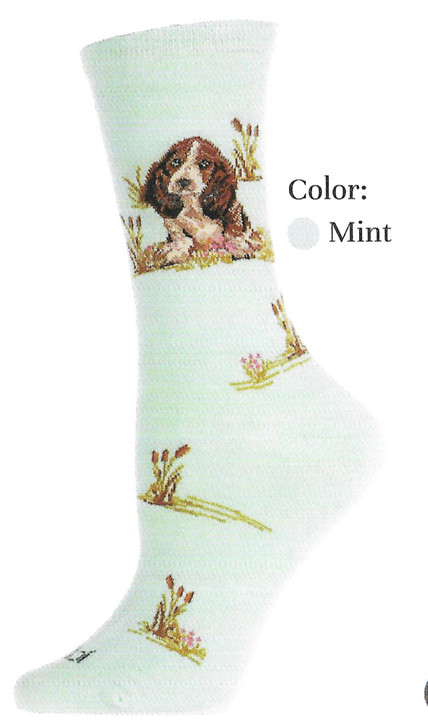 Mint green basset hound socks