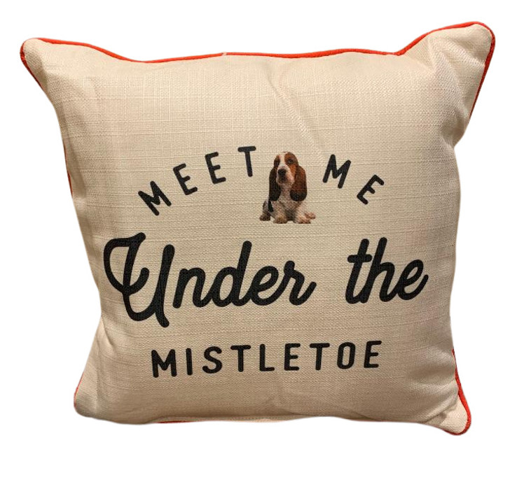 Meet me under the mistletoe pillow