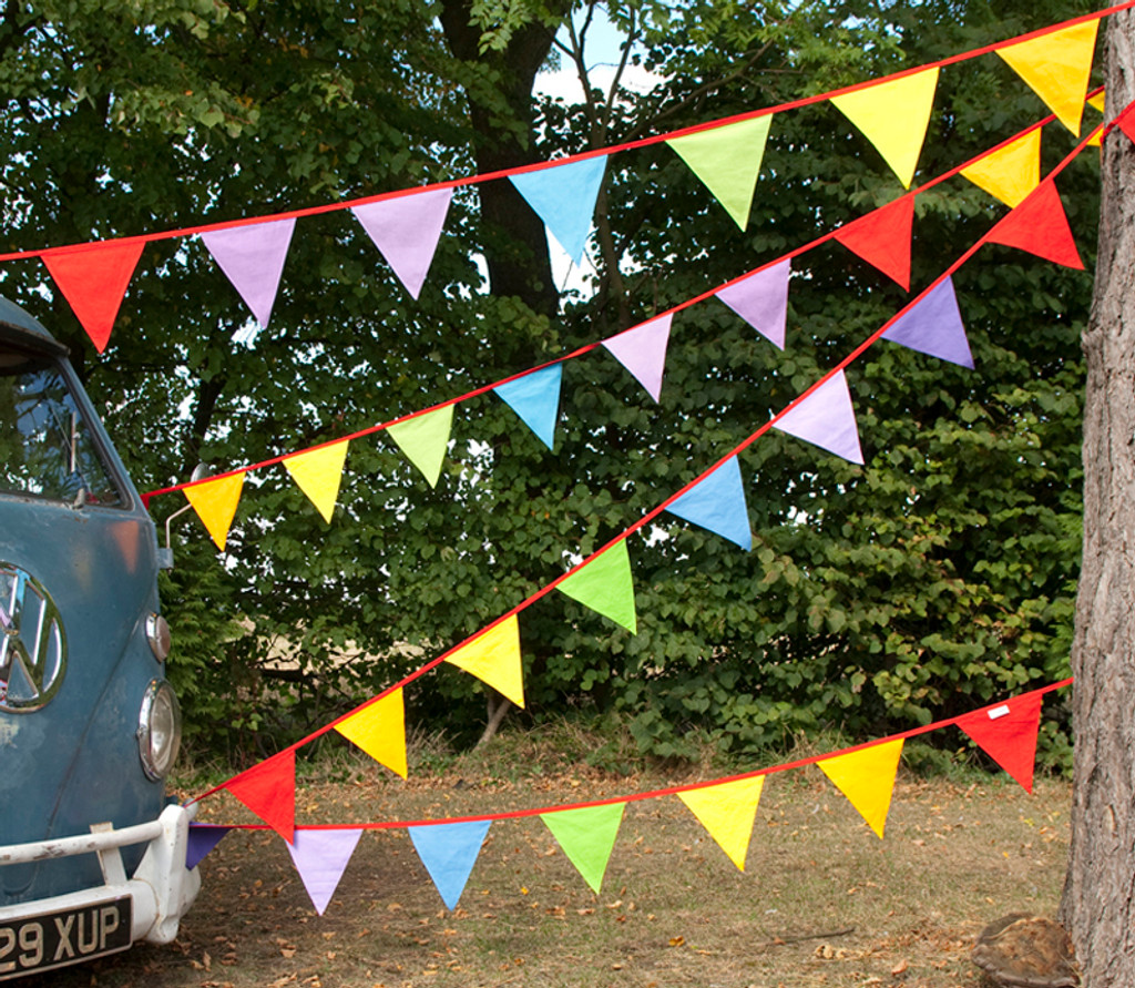 Multi-Coloured Rainbow Bunting