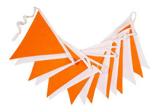 Orange and White Bunting