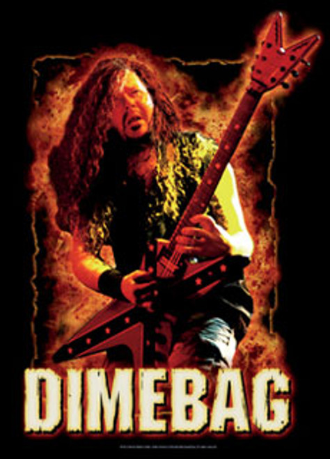 Flag DIMEBAG (FIRE) 30x40