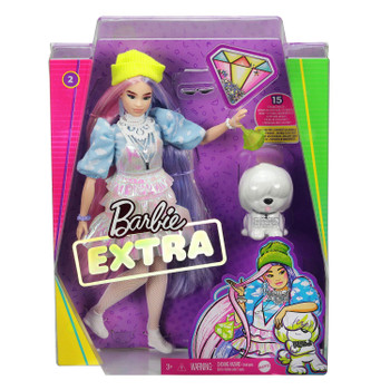 Barbie EXTRA Doll #2 in Shimmery Look with Beanie and Pet Puppy in packaging.
