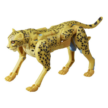 Cheetor toy converts into a Beast Wars-inspired cheetah mode in 20 steps. Lower jaw articulation in cheetah mode for classic look of Cheetor enthusiasm.