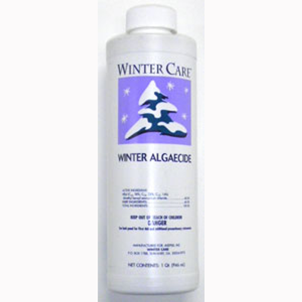 Omni Winter Care Pool Algaecide - 1 qt  -  24254