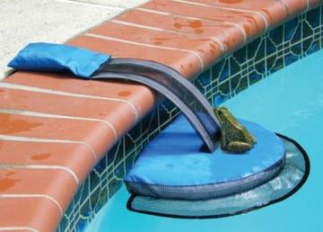 The FrogLog Critter-Saving Escape Ramp