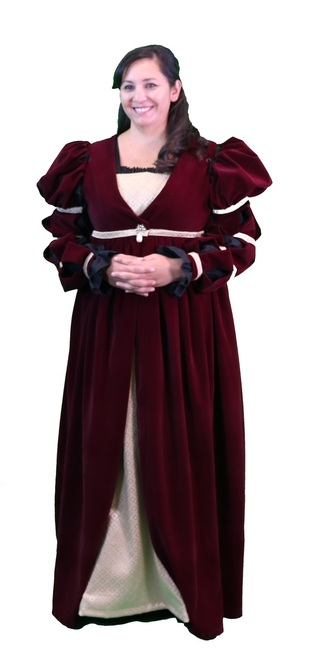 Verona Over Gown with Sleeves Large Burgundy