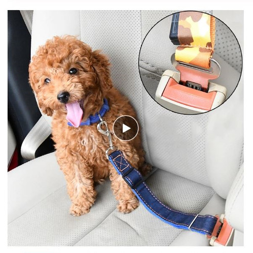 Car Seat Belt Safety Latch